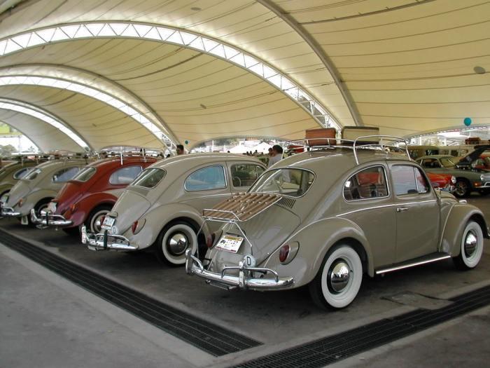 Festi Bug Aguascalientes